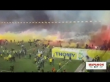 Фанаты «Янг Бойз» празднуют чемпионство