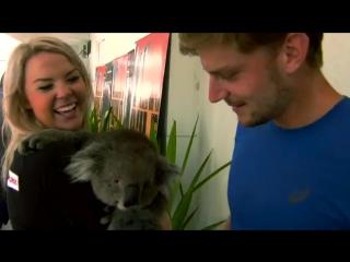 Aussie animals always cause a stir in the player lounge. / tennis insight