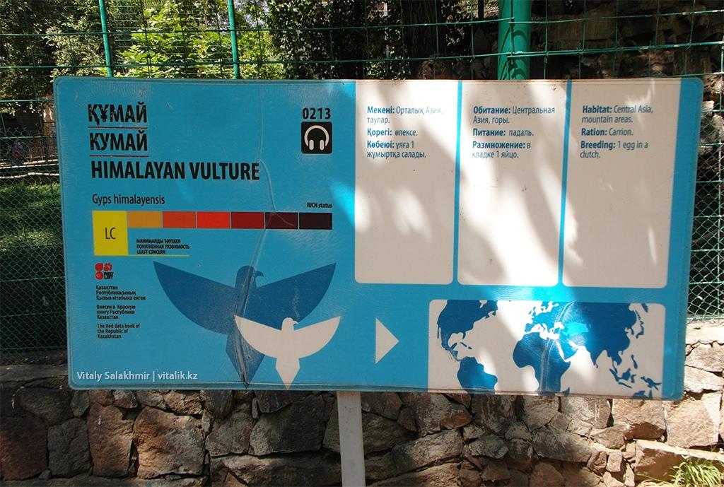 Кумай, табличка в зоопарке Алматы