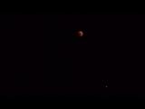 ?Лунное Затмение в Объективе Моей Фотокамеры?