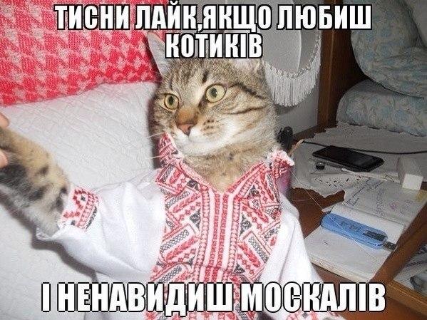 В Донецке раздаются орудийные залпы и взрывы, - мэрия - Цензор.НЕТ 8890