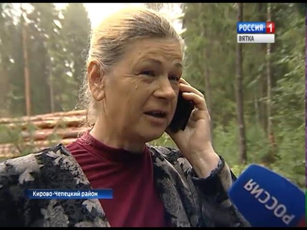 В Кирово Чепецком районе садоводы обеспокоены вырубкой леса