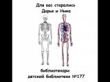 Книга с дополненной реальностью Анатомия