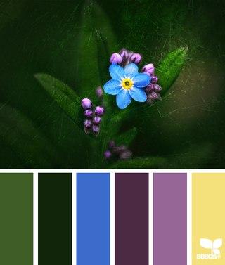 подбору цветовых схем для