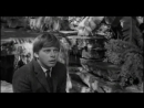 эпитафия (Незабвенная 1965)