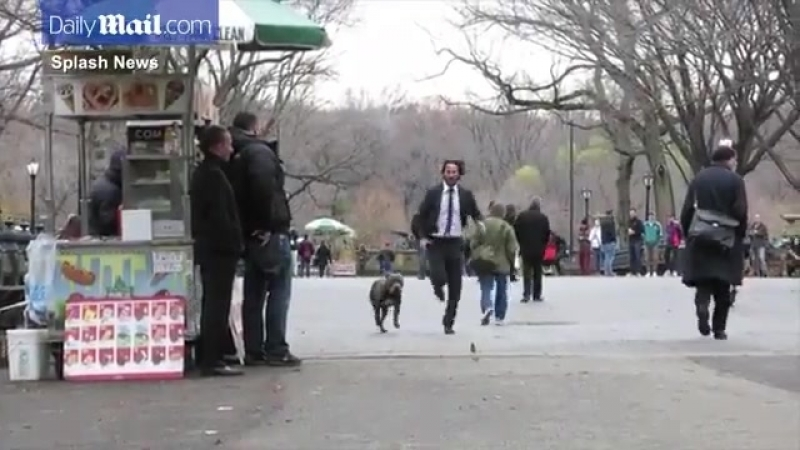 KeanuReeves runs with dog on John Wick 2 set in NYC 🐶