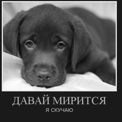 Нарийман Бекбаулиев, 10 марта 1996, Москва, id196517413