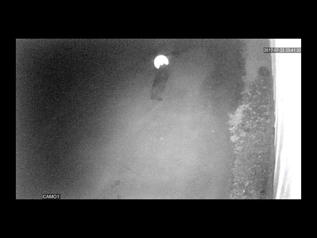 Шок! Камеры видеонаблюдения зафиксировали призраков