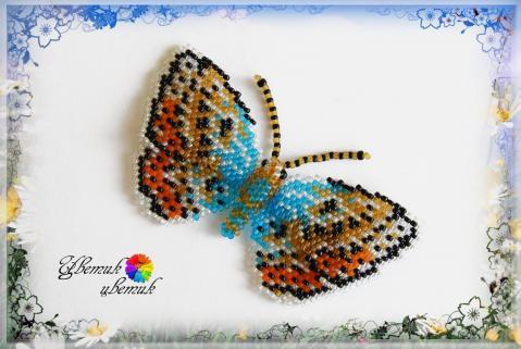 Схемы бабочек из бисера вы