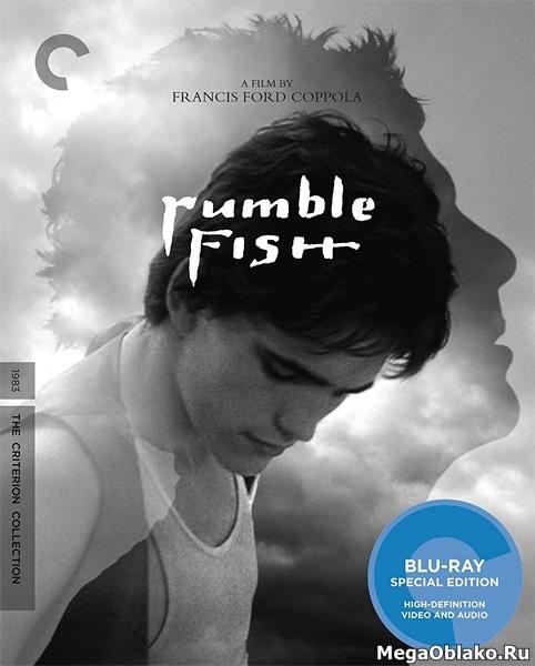 Бойцовая рыбка / Rumble Fish (1983/BDRip/HDRip)