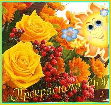 http://cs418221.vk.me/v418221893/a2e/nDR--N5ynB4.jpg