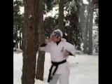 Набивка жёстких нокаутирующих рук в Кёкусинкай карате на дереве. Подготовка бойца http://vk.com/oyama_mas