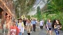 MADRID WALK 🇪🇸 Reina Sofia Museum to Royal Botanical Garden via Madrid Atocha Train Station | SPAIN