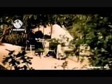 Ali Deek - Good morning Syria Arabic + English lyrics