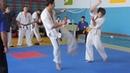 Командный кубок Киокушинкай каратэ Kyokushinkai karate command cup