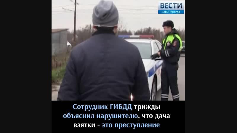 В Калининграде сотрудники ГИБДД задержали водителя маршрутки по подозрению в даче взятки