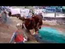 UHSRA Bareback Saddle Bronc Riding, Wasatch Rodeo, Heber City, Utah, May 10, 2013
