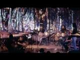 Frank Zappa Cheepnis-Percussion Roxy The Movie