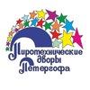 ПироПетергоф - Фейерверки и салюты СПб