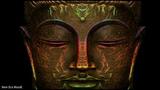 Wieloryb ~ Goa (Mono-Amine Remix)