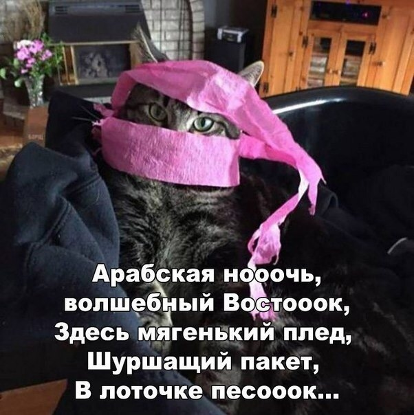 https://pp.userapi.com/c849332/v849332502/92cf/zjI1xq9PW2k.jpg