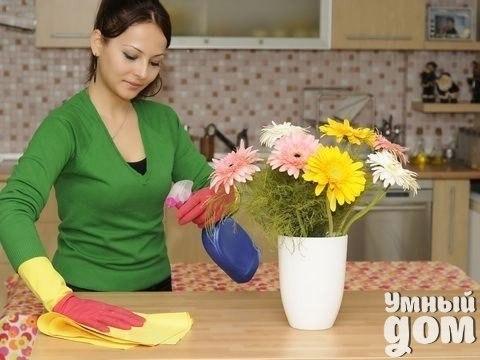 Интересно обсудить! ➨ Самый нужный и незаменимый бытовой прибор на вашей кухне? ➨ Дорогие хозяюшки, как вы мотивируете себя на уборку? ➨ Что бы вы поменяли в своем доме?