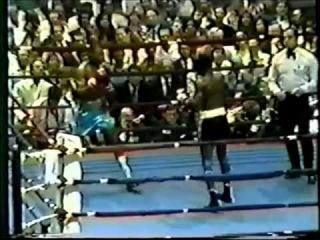 Первый бой Роя Джонса младшего на профессиональном ринге.