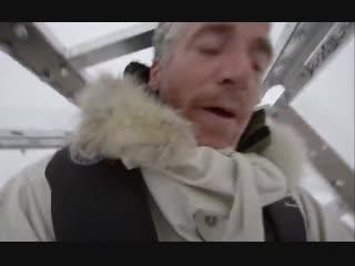 Wild polar bear tries to break in - bbc earth (2)