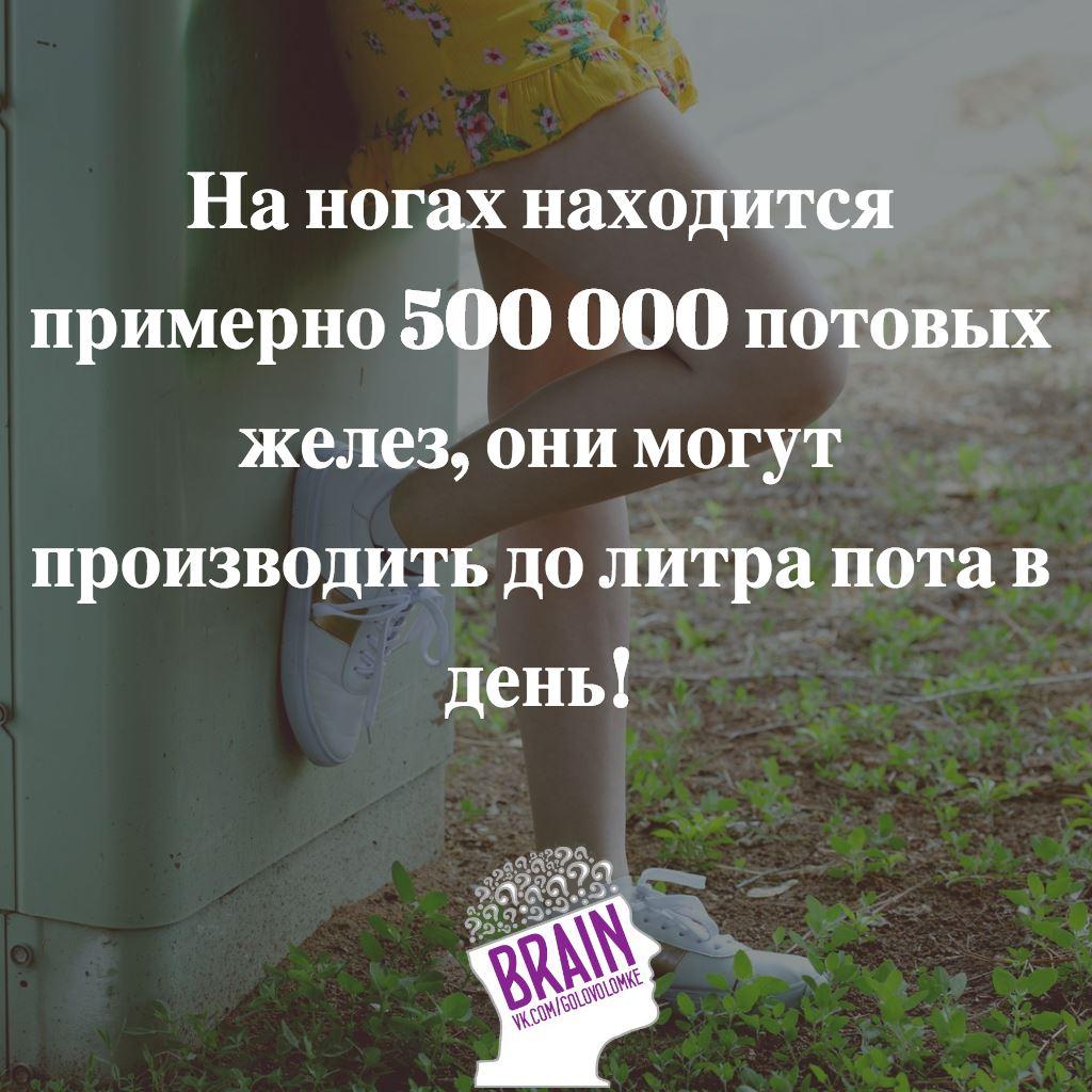 https://sun1-3.userapi.com/c543107/v543107328/4a670/lCa0rw8OS40.jpg