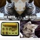 Фото Юрова Данила №33