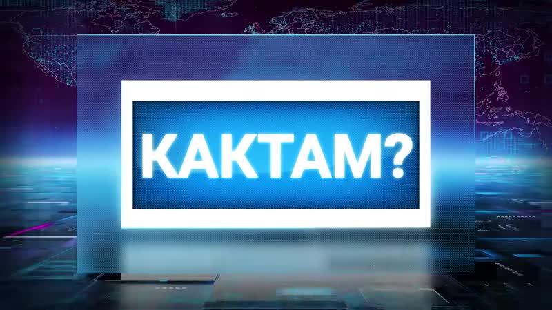 Кактам - Человеческий корм 24