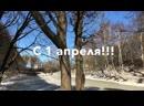 1 апреля. Вологжане делятся своими веселыми советами, девизами, пожеланиями и лозунгами))