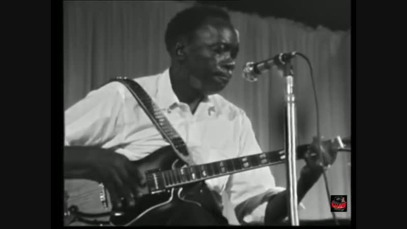 John Lee Hooker - Boom Boom (Live Video 1969)