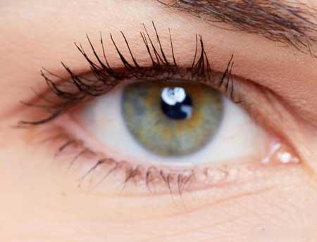 ДНК определяет цвет глаз.