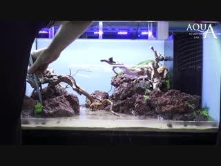 Aquascaping Lab - Tutorial Natural Aquarium Volcanic rocks Red Passion (size 80x
