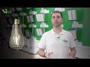 Viled: Основные типы светодиодов. Какие бывают светодиоды.