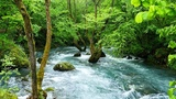 Water Sounds for Sleeping, Relaxing, Studying or Focus - River White Noise