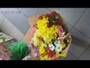Ромашковые хризантемы