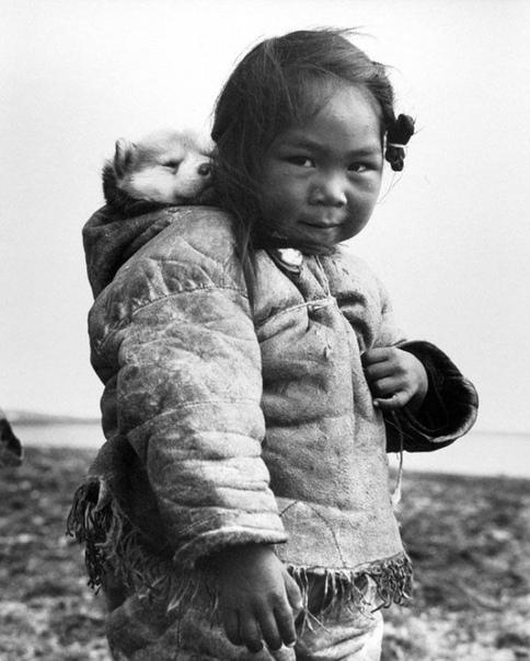 Милое фото маленькой эскимоски с её хаски. 1949 г.