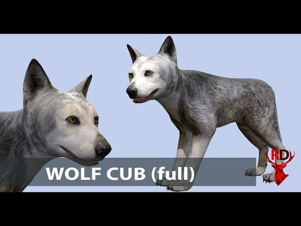 Wolf Cub Animations (Full)