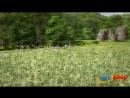 Serious Sam 4 Planet Badass - Reveal Teaser.mp4