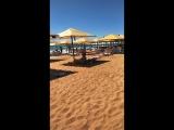 Золотые пляжи наши в Крыму