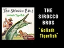 THE SIROCCO BROS - GOLIATH TIGERFISH - MANDOLIN ROCKABILLY STOMP!