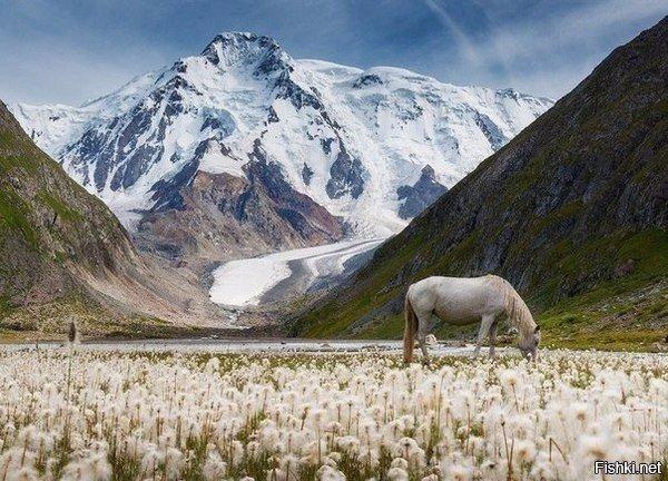 Долина горного хребта Терскей Ала-Тоо, Киргизия
