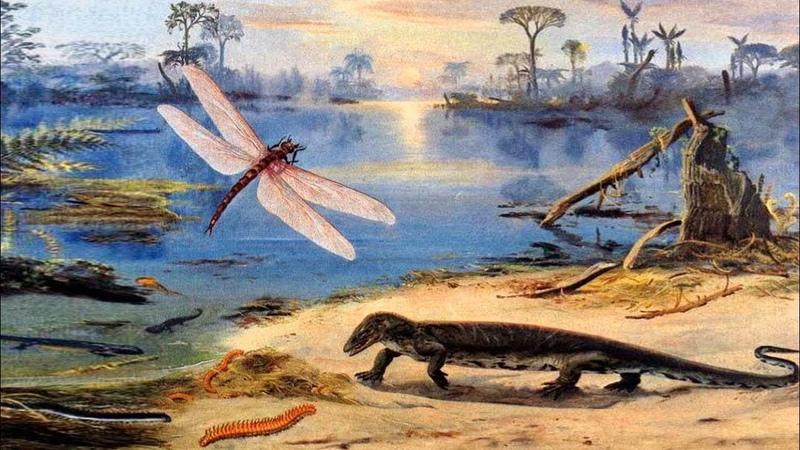 Каменноугольный период палеозойской эры рассказывает палеонтолог Эрвин Лукшевич
