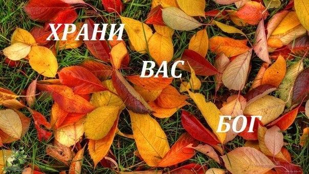 """Отбиты две атаки террористов на Марьинку. Ранены 10 воинов, - куратор батальона """"Кривбасс"""" Колесник - Цензор.НЕТ 6783"""