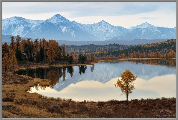 Горный Алтай. Озеро Киделю.