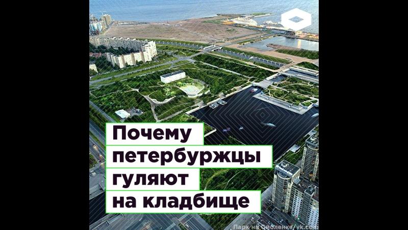 Жители Петербурга борются за парк на Смоленке | ROMB