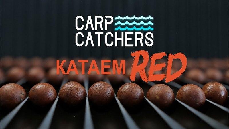 Производство бойлов: катаем RED. Carp Catchers