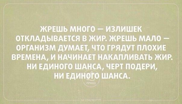 https://pp.vk.me/c543101/v543101264/5b9a/mg1j1tStRMA.jpg